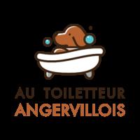 AU TOILETTEUR ANGERVILLOIS